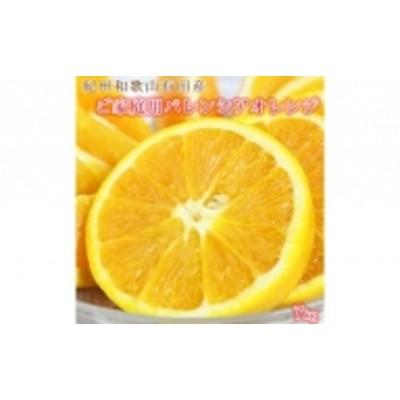 【ご家庭用訳あり】希少な国産バレンシアオレンジ7kg(2022年6~7月発送)