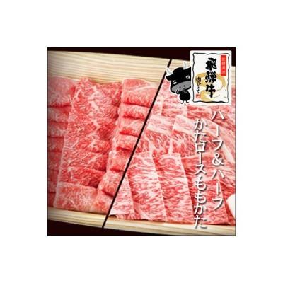肉 牛肉 焼肉 セット飛騨牛 1kg かたロース もも・かた バーベキューセット メガ バーベキュー BBQ 赤身 クラシタロース