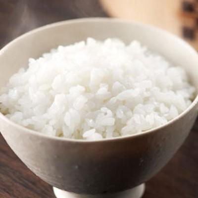 特別栽培米 新潟県産 こしひかり5kg