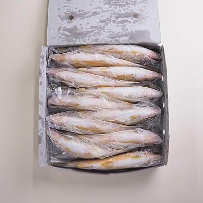 鮎1kg 冷凍便 冷凍便