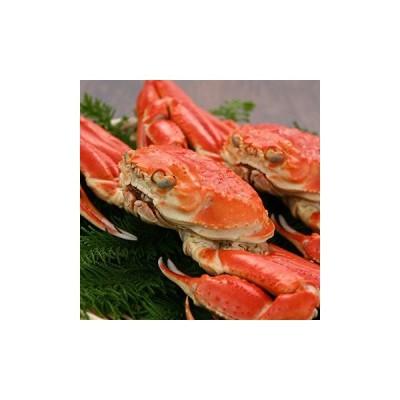 キングマカデミアンJAPAN ずわい蟹 2杯