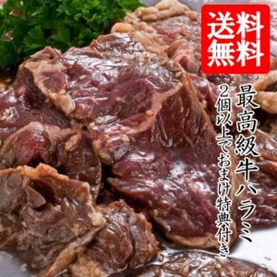 牛肉 焼肉 焼き肉 送料無料 牛 ハラミ サガリ 700g 肉 牛ハラミ 牛サガリ 焼肉用の肉 焼肉用肉 牛 焼肉 セット おまけ特典 肉