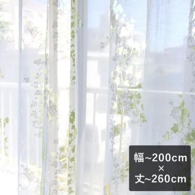 オパールレースカーテン Ivy アイヴィー イエローグリーン  幅〜200cm×丈〜260cm