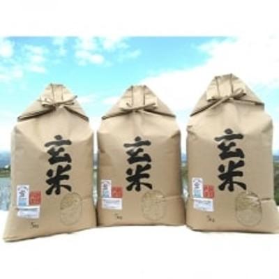 【栽培期間中農薬不使用】 特別栽培米 コシヒカリ玄米5kg×3袋