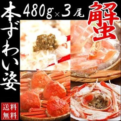 【送料無料】ボイルズワイガニ姿 (3尾入り 1尾約480g)【ずわいがに かに 蟹】ずわいがに/松葉蟹