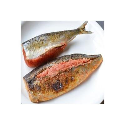 いわし明太子6尾 ・ さば明太子6枚セット 秘伝タレ漬込み 中間老舗辻鮮魚店の味【1072363】