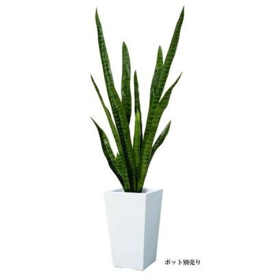 【ツリー・観葉】110cmサンセベリア