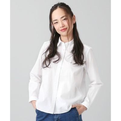 シャツ ブラウス オーガニックコットン レギュラー衿 ベーシック長袖シャツ