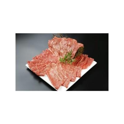 ふるさと納税 15-04 コクと旨みの宮崎牛ももスライス500g 宮崎県日向市