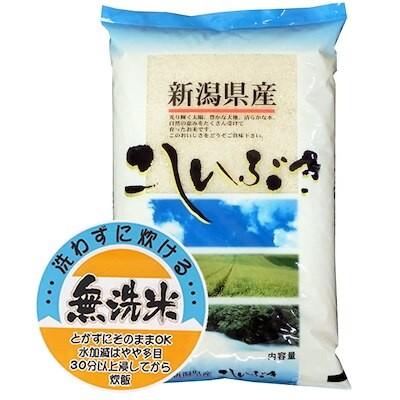 新米 令和3年産 無洗米 新潟県産 こしいぶき 10kgx1袋 (保存包装 選択可)