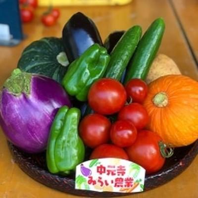 中元寺旬の実り野菜セット (旬の野菜7~9種類程度)