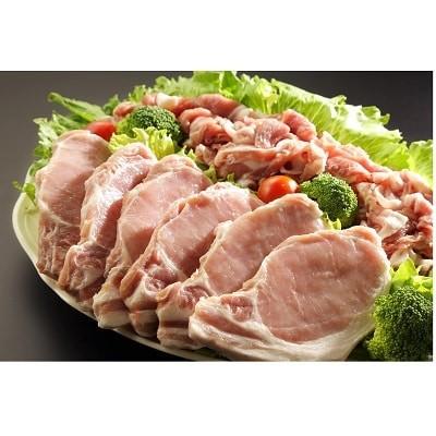 みかわもち豚ロース テキカツ用・ウデモモ切り落とし盛り合わせ(計2.1kg)