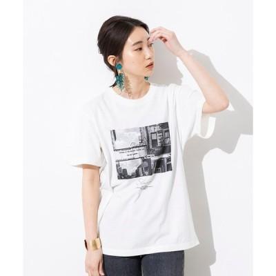 tシャツ Tシャツ 綿100% やわらかコットン フォトプリント Tシャツ