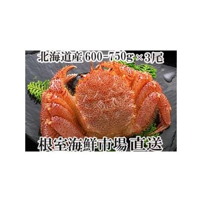 ふるさと納税 ボイル毛がに600〜750g×3尾 D-14010 北海道根室市