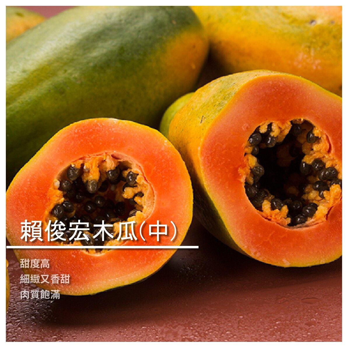 【賴俊宏木瓜農場】賴俊宏木瓜/中顆裝/13~18顆/箱