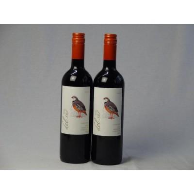 ワインセット 2本セット ミディアムボディ赤ワイン デルスール カルメネール(チリ) 750ml×2本