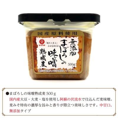 麦味噌 無添加 九州 熊本
