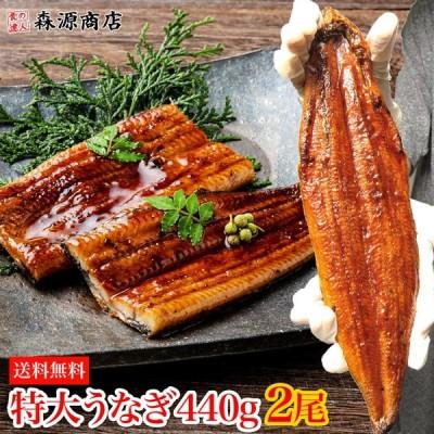 特大うなぎ蒲焼き440g (220gx2尾) 2本 ウナギ 鰻 タレ付 送料無料 お取り寄せグルメ ギフト