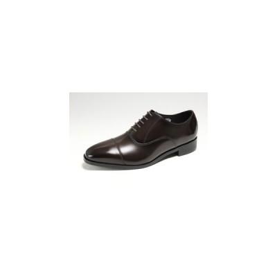 送料無料 マドラス モデロ メンズシューズ 5124 ダークブラウン madras modello 内羽根 ストレートチップ 紳士靴 本革 ビジネスシューズ