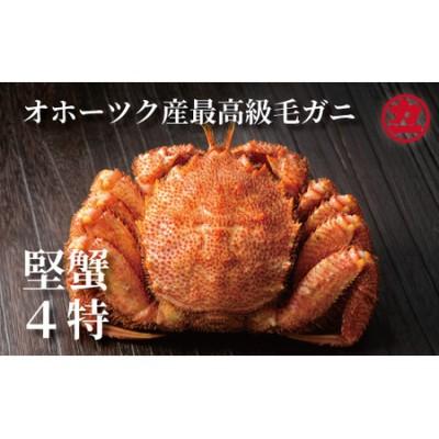20-133 オホーツク産【四特】毛ガニ 570g前後