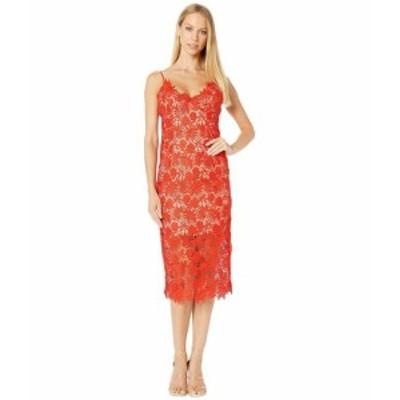 Bardot バルドー ドレス 一般 Tayla Lace Dress