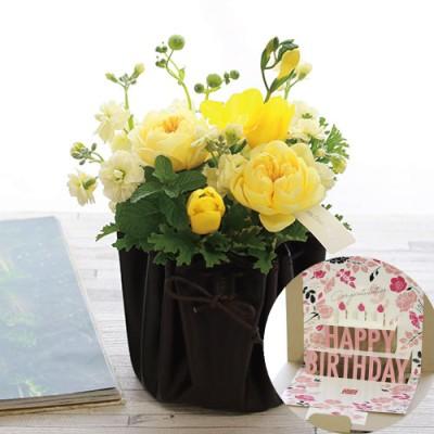 青山フラワーマーケット 生花 バースデーポップアップカード&カラードアレンジメント(ミモザ) バラ フラワーギフト プレゼント