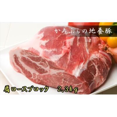 かみふらのポーク【地養豚】肩ロースブロック2.3kg