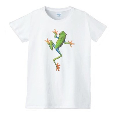 カエル 動物生き物 Tシャツ 白 レディース 女性用 jd72