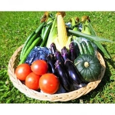 『つやま産直発!ときめきパック』 季節の野菜と加工品のセット