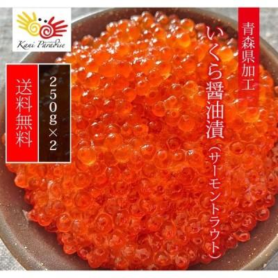 いくら醤油漬 ( サーモントラウト 卵 ) 500g(250g×2パック入り) / 北欧サーモン いくら イクラ 小粒 海鮮 丼 手巻き