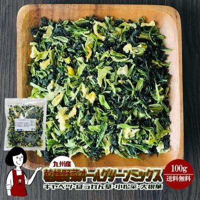 乾燥野菜オールグリーンミックス 100g チャック付
