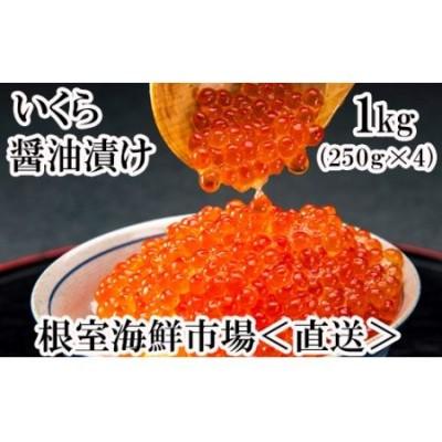 根室海鮮市場<直送>いくら醤油漬250g×3P(計750g) B-28012