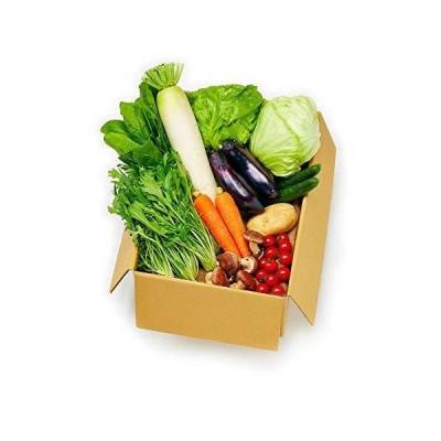 岡山県産限定 新鮮 産直野菜たっぷりセット(野菜11品目)お届け日指定可能