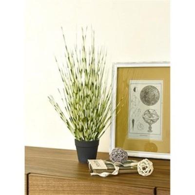 観葉植物 光触媒 フェイクグリーン 「ZEBRA GRASS」 (SS)約53cm