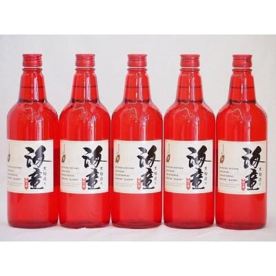 黒麹造り 海童 祝い赤 本格芋焼酎 濱田酒造(鹿児島県)720ml×5本