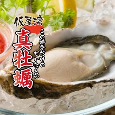 仮屋湾の真牡蠣(1.8kg)【殻付き】