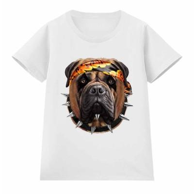 【ブルマスティフ ドッグ 犬 いぬ ロック】レディース 半袖 Tシャツ by Fox Republic
