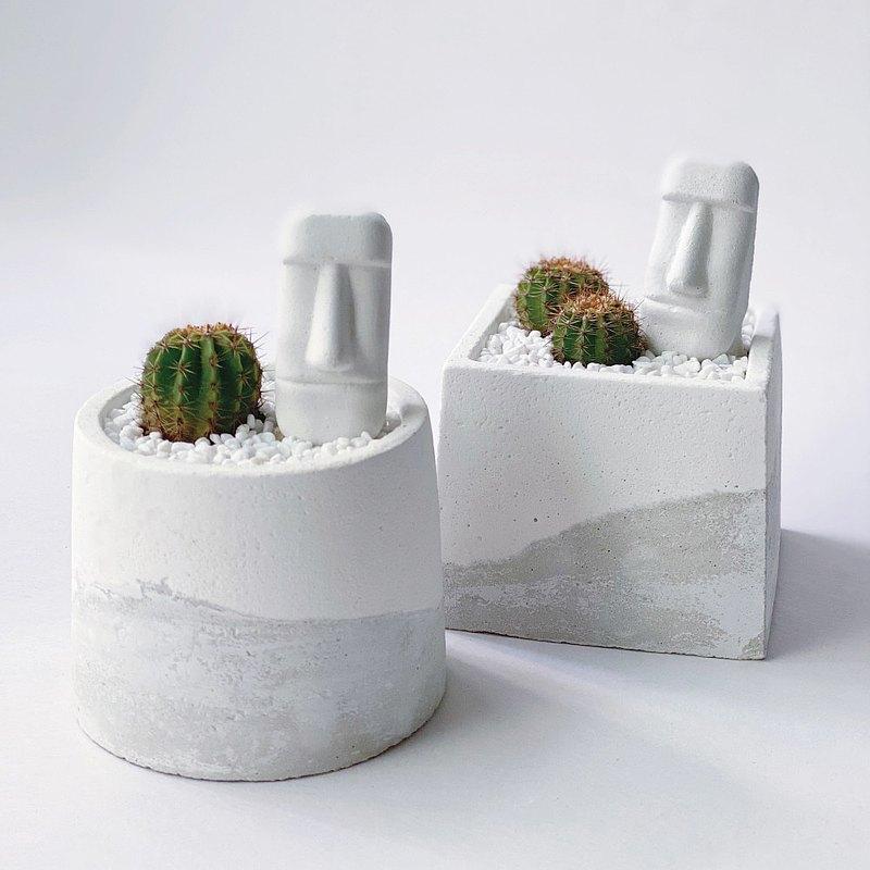 伴-仙人掌圓形/方形水泥植栽+摩艾擺飾 ( 現貨 )