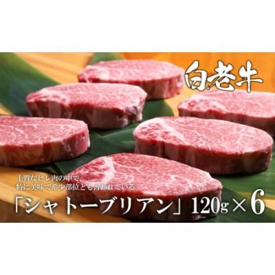 白老牛シャトーブリアン(6枚) 【AH001】