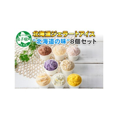 ふるさと納税 480.北海道 アイスクリーム ジェラート 食べ比べ 8個 アイス A セット 手作り 北国からの贈り物 北海道弟子屈町