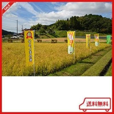 【精米】広島県産恋の予感 5kg 令和2年産