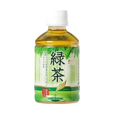 神戸居留地緑茶 280ml×24本
