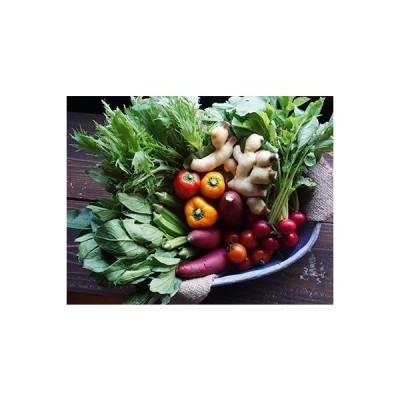南国市 ふるさと納税 イナカデリコのヘルシー高知野菜セット(旬野菜5-7種+玄米グラノーラ)(1-2名分)
