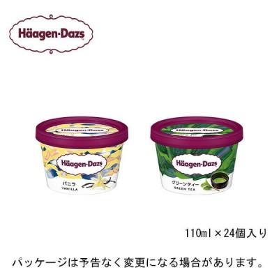 HD ハーゲンダッツ ミニカップ 24個セット バニラ・グリーンティ(各12個入)