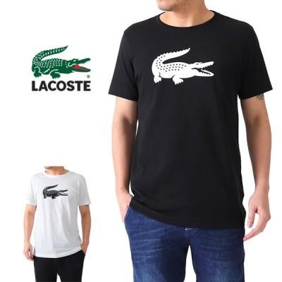 LACOSTE ラコステ ビッグロゴ ウルトラドライ Tシャツ TH3377L 半袖Tシャツ メンズ