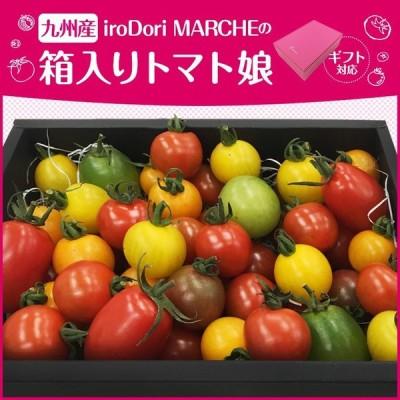 【母の日にも!】【クール便】九州産 iroDori MARCHEの箱入りトマト娘 通常用 800g ギフト用 600g 産地直送
