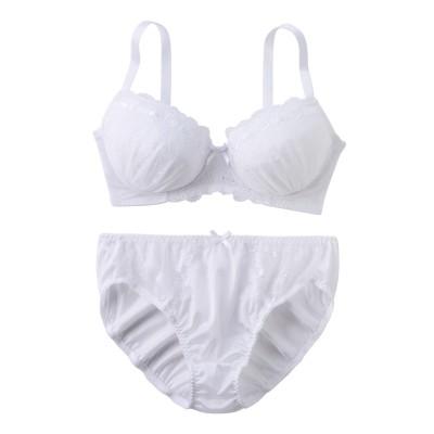 シンプルカラートーンブラジャー。ショーツセット(ラージサイズ)(C90/3L) (ブラジャー&ショーツセット)Bras & Panties