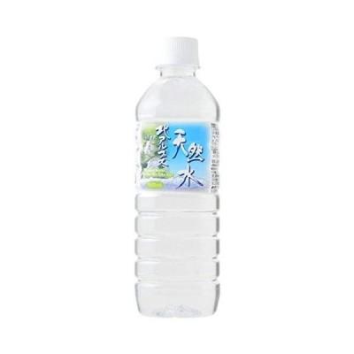 飛騨高山北アルプス 天然水 500ml×24本 採水地:岐阜