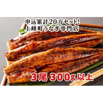 100g×3尾 柳屋の国産うなぎ蒲焼 B-615