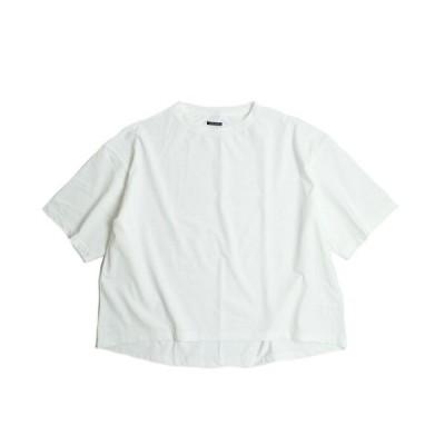 tシャツ Tシャツ SUNNY SPORTS / サニースポーツ FEEL FIT BIG CREW TEE
